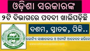 jobs in odisha district wise,givt jobs odisha